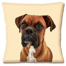 Boxer Dog Cushion Cover 16x16 inch 40cm Square Young Dog Photo Print on Cream