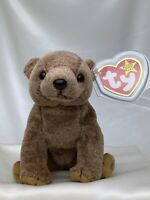 Rare Retired Ty Beanie Baby Pecan The Bear 1999 Mint P.E. Pellets With Errors