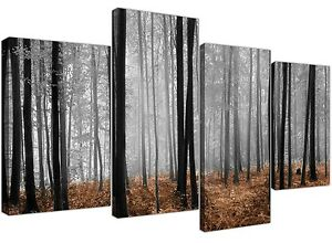 Large Black and White Canvas Pictures of Brown Forest Woodland Trees