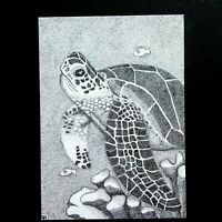 "ACEO Original Art Card Pen and Ink Sea Turtle Animal 2.5"" x 3.5"" Drawing"