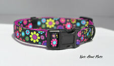 Daisy dog collar small, matching leads