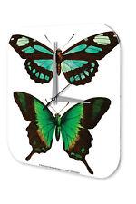 Wall Clock Butterfly Decoration  Green Acryl Acrylglass