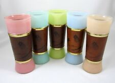 Siesta Ware Set of 5 Pastel Tiki Bar Glasses Wood Wrap Vintage 1950s Hawaiian