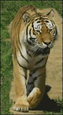 "Tigre Siberiano 4 puntada cruzada contada Kit 22 ""x 12"" 30,5 cm X 55,5 Cm"