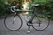 Rennrad Carbon Bergamont 56Zoll