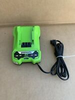 Greenworks 24v Charger 24 Volt Battery Charger (cag801)