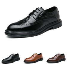 Mens Low Top Business Leisure Shoes Brogue Wing Tip Oxfords Pointy Tore Casual L