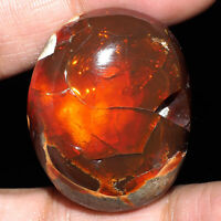 116.20 Cts Certified Natural Opal Tumble Huge Collector's Gemstone - Ethiopia