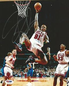 Dennis Rodman Signed Bulls Baketball 8x10 Photo PSA/DNA COA Picture Autograph 91