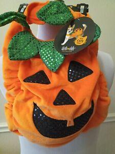 Thrills & Chills Pumpkin Pet Costume Dog Cat Size MEDIUM Orange Jack O Lantern