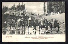 TURQUIE divers SMYRNE Caravane de chameaux des tapis d'OUCHAK