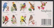 Echte Briefmarken aus den USA mit Vögel-Motiv