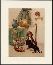 DACHSHUND NAUGHTY DOGS AND MASTERS BOOT LOVELY DOG PRINT MOUNTED READY TO FRAME