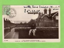 Sandringham Kennels Russian Borzoi Dog RP pc used 1910 WHS Kingsway Ref B90
