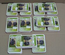 bulk Woolworths Aussie Animals BABY WILDLIFE collector cards 14 complete sets