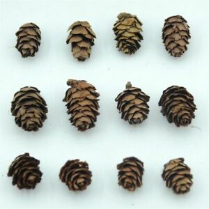 50pcs Natural Mini Pine Cone Decoration For Home Christmas Tree Decor Holiday