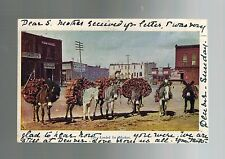 1906 Mules Loaded for Market Street Denver Colorado Real Picture Postcard Cover