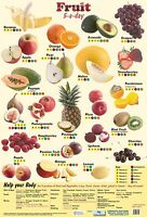 5 A DAY FRUIT  POSTER A2 60CM X 40CM EDUCATIONAL HEALTH NUTRITION VITAMINS KS1/2
