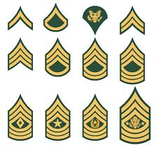 U.S. Army rank insignia private sergeant specialist corporal sticker vinyl decal