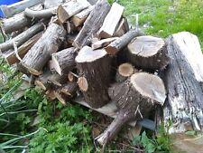 New listing Cedar Fire Wood Pile Point pleasant Nj Seaside Nj Toms river Brick Nj Bayville