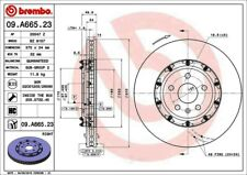 Disc Brake Rotor-Premium OE Equivalent Rotor Front Right Brembo 09.A665.23