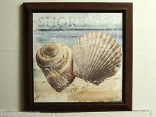 SEASHELL PICTURE SEASCAPE BEACJH SCALLOP  FRAMED PRINT 12X12