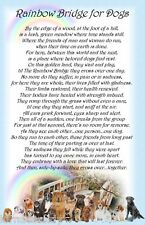 Rainbow Bridge for Dogs Pet Bereavement Graveside Memorial keepsake Card Poem
