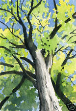 Tree Painting 5 x 7 Giclee Art Print Signed by Artist DJR