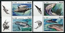 Angola 2018 MNH Dolphins 4v Set Mammals Marine Animals Stamps