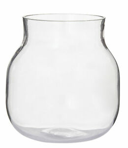 Rogue Adina Large Clear Glass Vase for Flower Plants - Planter Pot Container