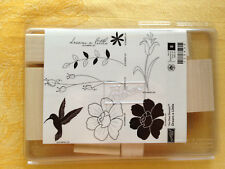 DREAM A LITTLE  by Stampin Up NEW! UM  Rubber Stamp