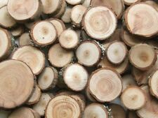 X5 Log slice Wedding cake table centre piece rustic stand tree wood 20-25cm