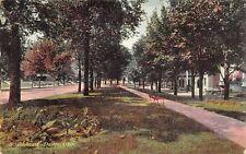 Dayton Ohio c1906 Undivided Back Postcard North Boulevard