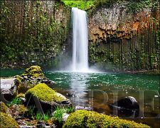 Waterfall Photograph 8X10 New Fine Art Color Print Picture Photo Nature Forest