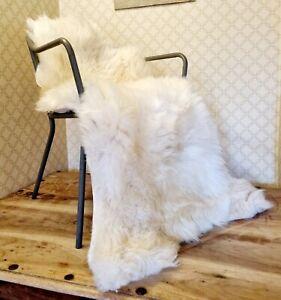 XXXXL Huge  British Cream Sheepskin Rug - 150cm by 85cm A++ (4152)