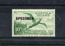 NORFOLK ISLAND RARE 1961 BIRD SPECIMEN w/FRAME RETOUCH MNH