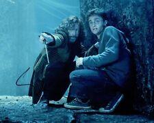 Gary OLDMAN SIGNED Autograph 10x8 Photo 2 AFTAL COA Harry Potter Sirius Black