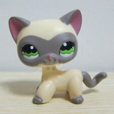 Littlest Pet Shop Collection LPS Loose Toys Yellow Siamese Kitty Cat 1116 D1