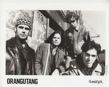 Orangutang- Music Memorabilia Photo
