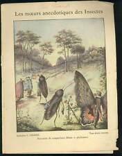 PROTEGE-CAHIER ANCIEN Illustré Educatif MOEURS ANECDOTIQUES DES INSECTES Charier