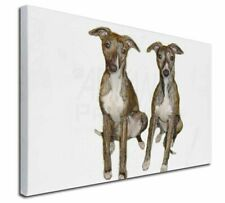 More details for whippet dogs x-large 30