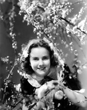 8x10 Print Deanna Durbin Beautiful Portrait #5500998