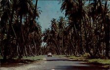 Trinidad Tobago Karibik Antillen Antilles ~1960/70 Ortoire Road Straße Car Auto