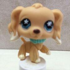 Littlest Pet Shop LPS #748 dog Tan COCKER SPANIEL Blue Star Eyes Ships FREE