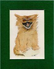 Lucy Dawson ~ Cat ~ Kitten  Hand Coloured Print. Genuine Vintage 1946