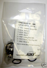 Cat Pumps Valve Kit 33062