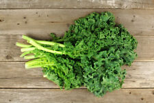 Seeds Cabbage Kale Zelonaya Green Borecole Organically Grown Rare Heirloom
