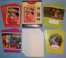 Box of 12 Birthday Cards w/ puppies, kittens by Moments to Treasure #IG68019 New