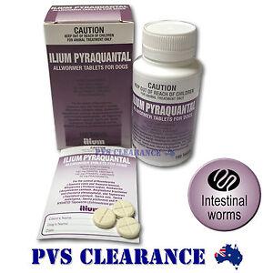 Ilium Pyraquantal Allwormer Dog Worming Tablets - 1 Tab per 10kg - Dog Wormer