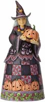 Jim Shore Best Witches This Halloween Figurine~6001547~New in box!!